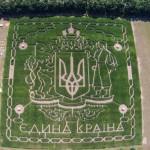 лабиринт из кукурузы под Киевом
