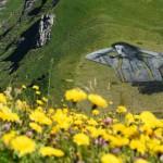 Пастух на склоне Шо-де-Монт в долине Лейзан. Saype