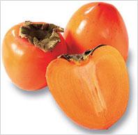 persimmon1